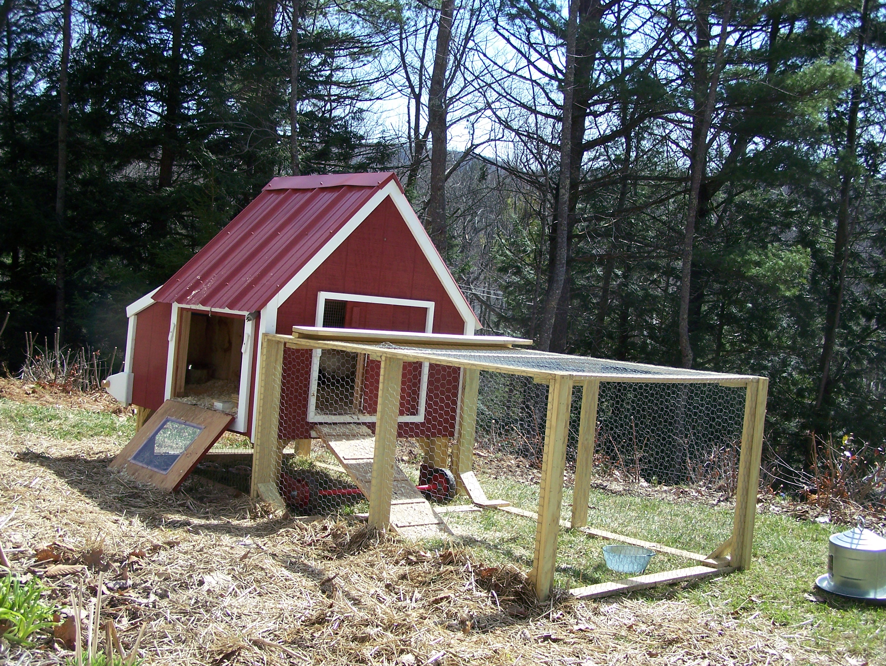 Chicken coop louisa enright 39 s blog for Making a chicken coop