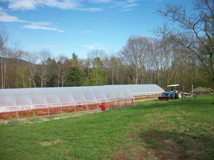 Golden Brook Farm hoop houses