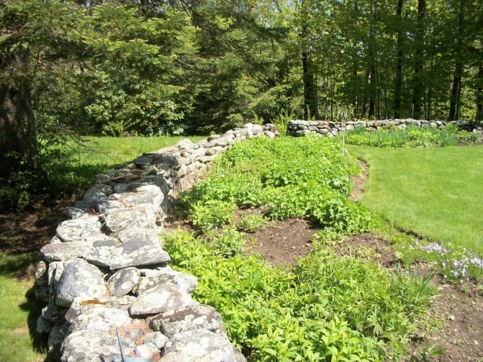Sarah's back stone wall