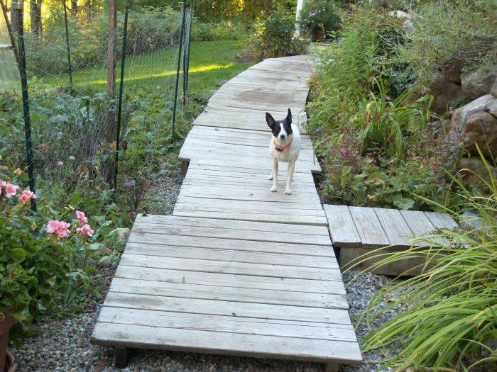 Sept 29, boardwalk down
