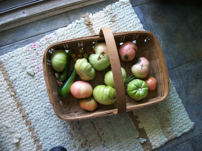 Sept. 29, Green Tomatoes